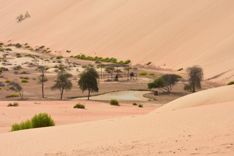 HOTL-AbuDhabi-AnantaraQasr-Dunes1